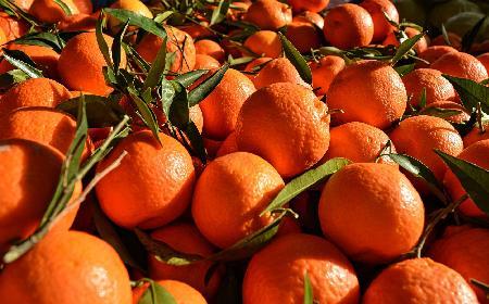 Pomarańcze w winie - przepis na wyjątkowy deser