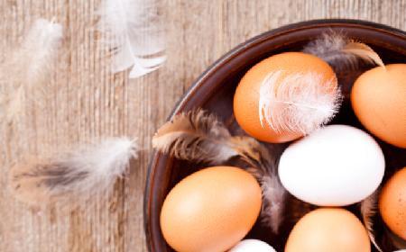 Czy warto jeść jajka? Z czym łączyć jajka?